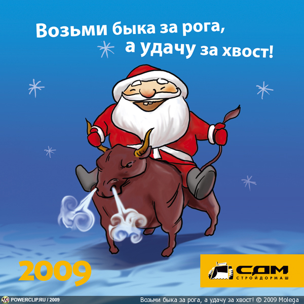 Возьми быка за рога, а удачу за хвост!
