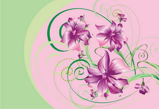 Vector Constructor: цветочки(Векторная графика и иллюстрация)
