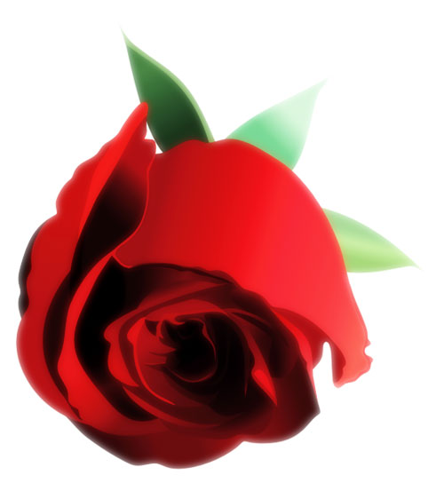 Vector Constructor: Роза(Векторная графика и иллюстрация)