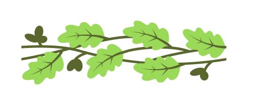 Узоры: Орнамент из листьев дуба(Векторная графика и иллюстрация)