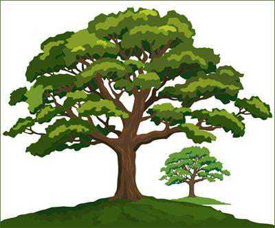 VGlow: дерево(Векторная графика и иллюстрация)