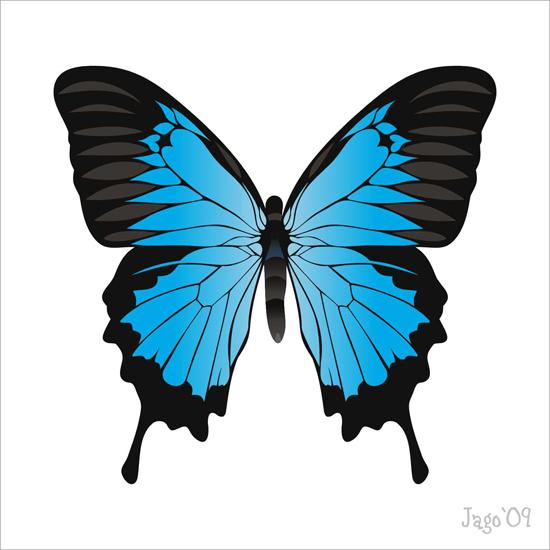 векторная бабочка