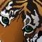 тигренок для Тигрис