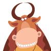 Коровы 2009