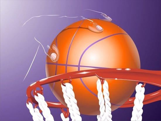V-Best: Мяч в корзине(Векторная графика и иллюстрация)
